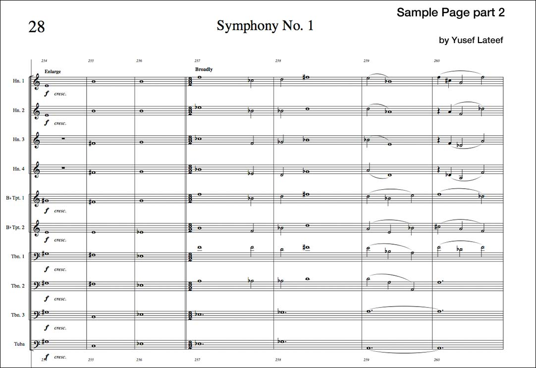 Symphony No. 1 (\
