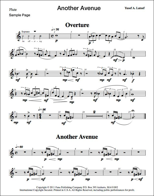 Another Avenue (Opera)