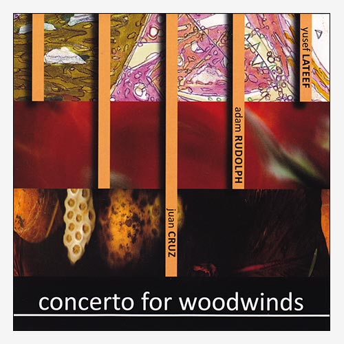 Concerto for Woodwinds